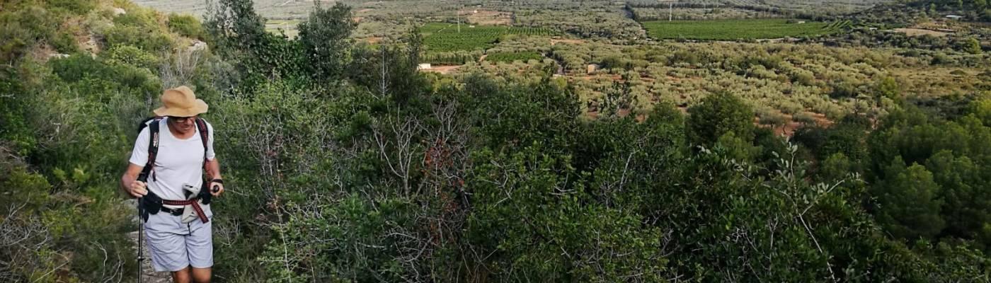Josu Belmonte caminando entre la vegetación por un estrecho sendero. Al fondo se ve la hilera de montes.