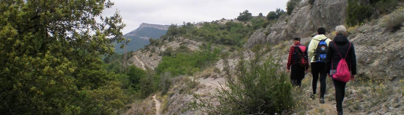 Tres caminantes avanzan en silencio por un sendero de montaña, bajo el cielo cubierto.